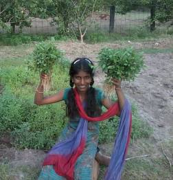 Subala is happy with experiment to grow vegetables